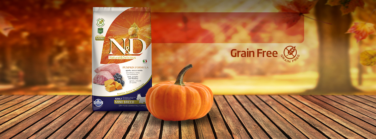 nd-pumpkin-fb-cover-1277x473-editable